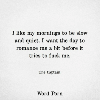 Fuck, Porn, and Quiet: I like my mornings to be slow  and quiet. I want the day to  romance me a bit before it  tries to fuck me.  The Captain  Word Porn
