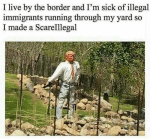 Get off my lawn : I live by the border and I'm sick of illegal  immigrants running through my yard s  I made a Scarelllegal Get off my lawn