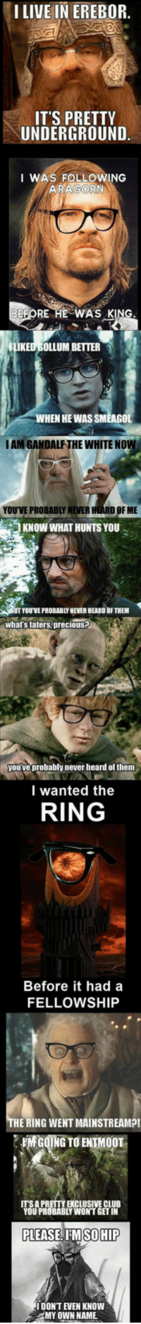 <p>The Lord Of The Rings Is Full Of Hipsters.</p>: I LIVE IN EREBOR  ITS PRETTY  UNDERGROUND  I WAS FOLLOWING  ARAGORN  EFORE HE WA'S KIN  LIKED GOLLUM BETTER  WHEN HE WAS SMEAGOL  IAM GANDALF THE WHITE NOW  YOU'VE PROBABLY NEVER HEARD OF ME  KNOW WHAT HUNTS YOU  YOUVE PROBABLY NEVER HEARD OF THEM  whats taters, precious?  yourve probably never heard of them  I wanted the  RING  Before it hada  FELLOWSHIP  THE RING WENT MAINSTREAMP!  MCOING TO ENTMOOT  A PRETTY EXCLUSIVE CLUB  YOU PROBABLY WON'T GET IN  PLEASE, I'MSOHIP  I DONT EVEN KNOW  MY OWN NAME <p>The Lord Of The Rings Is Full Of Hipsters.</p>