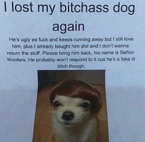 Bitch, Fake, and Love: I lost my bitchass dog  again  He's ugly as fuck and keeps running away but I still love  him, plus I already bought him shit and I don't wanna  return the stuff. Please bring him back, his name is Señior  Woofers. He probably won't respond to it cus he's a fake lil  bitch though me🐶irl