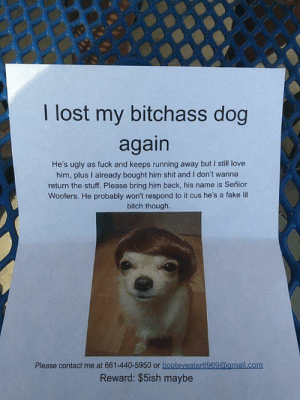 Love My Dog Meme. 25 best memes about dog i love you dog i love you ...: I lost my bitchass dog  again  He's ugly as fuck and keeps running away but I still love  him, plus I already bought him shit and I don't wanna  return the stuff. Please bring him back, his name is Señior  Woofers. He probably won't respond to it cus he's a fake lil  bitch though.  Please contact me at 661-440-5950 or booteveater6969@amail.com  Reward: $5ish maybe Love My Dog Meme. 25 best memes about dog i love you dog i love you ...