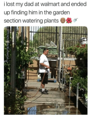 When dad instincts kick in.: i lost my dad at walmart and ended  up finding him in the garden  section watering plants When dad instincts kick in.