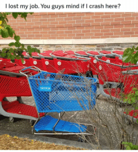 This shopping cart just made me tear up a little. RIP Toys R Us 😢: I lost my job. You guys mind if I crash here? This shopping cart just made me tear up a little. RIP Toys R Us 😢