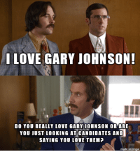 Me When People Say They're Voting 3rd Party: I LOVE GARY JOHNSON!  DO YOU REALLY LOVE GARY JOHNSON OR ARE  YOU JUST LOOKING AT CANDIDATES AND  SAYING YOU LOVE THEMP  made on imgur Me When People Say They're Voting 3rd Party