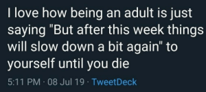 """Being an Adult, Love, and MeIRL: I love how being an adult is just  saying """"But after this week things  will slow down a bit again"""" to  yourself until you die  5:11 PM 08 Jul 19 TweetDeck Meirl"""