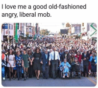 Love, Good, and Angry: I love me a good old-fashioned  angry, liberal mob Those damn liberals are at it again.....