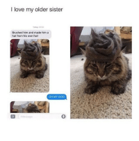 if i had a cat i would totally do this lmao :~)) @nuggeret: I love my older sister  Todey 20 00  Brushed him and made him a  hat from his own hair  OH MY GOD  Message  0 if i had a cat i would totally do this lmao :~)) @nuggeret