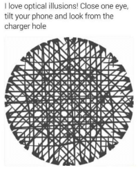 Love, Phone, and Tilt: I love optical illusions! Close one eye,  tilt your phone and look from the  charger hole Heard you like dumps