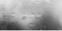 Love, Http, and Net: I love rainy day http://iglovequotes.net/