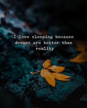 Dreams Are: I love sleeping because  dreams are better than  reality