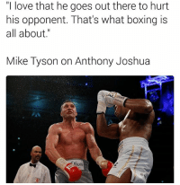 """Boxing, Love, and Memes: """"I love that he goes out there to hurt  his opponent. That's what boxing is  all about  Mike Tyson on Anthony Joshua High praise 🥊"""