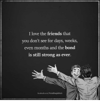 Facebook, Friends, and Love: I love the friends that  you don't see for days, weeks,  even months and the bond  is still strong as ever.  facebook.com/WeirdPeopleRock Follow Weird People <3