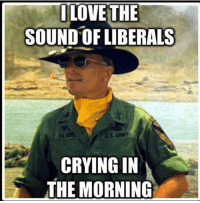 I LOVE THE  SOUND OF LIBERALS  CRYING IN  THE MORNING