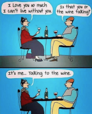 Funny, Love, and Wine: I Love you so much  I can't live without you. the wine falking?  Is that you or  It's me... Talking to the wine. Haha! Very funny.