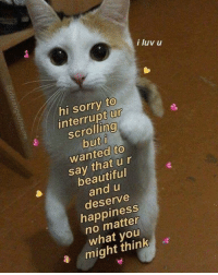 Beautiful, Sorry, and Tumblr: i luv u  hi sorry to  interrupt ur  scrolling  but i  wanted to  say that ur  beautiful  and u  deserve  happiness  no matter  what you  a might think browsedankmemes:  Merry Xmas redditors via /r/wholesomememes http://bit.ly/2EJWaYR