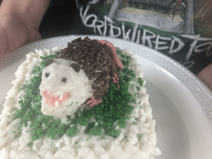 I made a baby possum cake today. My hand is bigger then it.: I made a baby possum cake today. My hand is bigger then it.