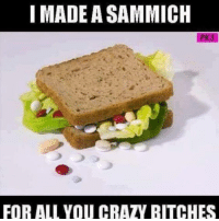 ~gin~: I MADE A SAMMICH  FOR ALL YOU CRAZY BITCHES ~gin~
