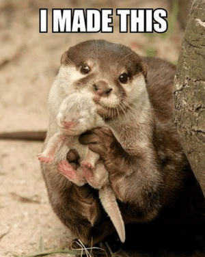 Look at this cute mother otter ! Everything will be fine for you today! (I love otters): I MADE THIS Look at this cute mother otter ! Everything will be fine for you today! (I love otters)