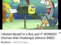 Ricegum: I Mailed Myself in a Box and IT WORKED!  (Human Mail Challenge) (Almost DIED)  RiceGum 10,878,176 views
