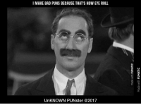 I make bad puns because that's how eye roll. #UnKNOWN PUNster: I MAKE BAD PUNS BECAUSE THAT'S HOW EYE ROLL  3  UnKNOWN PUNster @2017 I make bad puns because that's how eye roll. #UnKNOWN PUNster