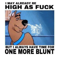 high as fuck: I MAY ALREADY BE  HIGH AS FUCK  BUT I ALWAYS HAVE TIME FOR  ONE MORE BLUNT