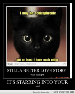 It's Starring Into Yourhttp://omg-humor.tumblr.com: I may be schizophrenic  but at least I have each other.  9GAG.COM/GAG/3949330  STILL A BETTER LOVE STORY  Than Twilight  IT'S STARRING INTO YOUR  soul  TASTE OF AWESOME.COM  Banned in 0 countries It's Starring Into Yourhttp://omg-humor.tumblr.com