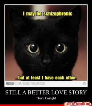 Still A Better Love Storyhttp://omg-humor.tumblr.com: I may be schizophrenic  but at least I have each other.  9GAG COM/GAG/3949330  STILL A BETTER LOVE STORY  Than Twilight  TASTE OF AWESOME.COM Still A Better Love Storyhttp://omg-humor.tumblr.com