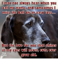 I will remain by your side also!: I may not always hear when you  call my name and sometimes I  miss the ball on an easy tasso 000  But the love for you that shines  in my eyes Wll never ever ever  Dog  grow dido  Talks I will remain by your side also!