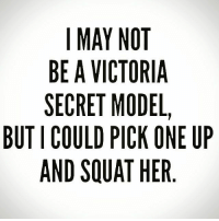 And probably overhead press: I MAY NOT  BE A VICTORIA  SECRET MODEL,  BUT I COULD PICK ONE UP  AND SQUAT HER And probably overhead press