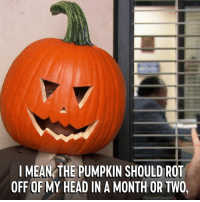Dank, Halloween, and Head: I MEAN THE PUMPKIN SHOULD ROT  OFF OF MY HEAD IN A MONTH OR TWO, TFW you fully commit to Halloween. The Office is on now.