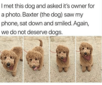 https://t.co/IBC7Bj4y1E: I met this dog and asked it's owner for  a photo. Baxter (the dog) saw my  phone, sat down and smiled. Again,  we do not deserve dogs. https://t.co/IBC7Bj4y1E