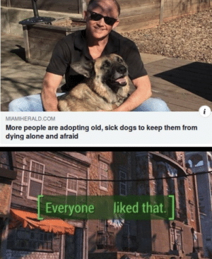 Good doggo by disisbeyondscience MORE MEMES: i  MIAMIHERALD.COM  More people are adopting old, sick dogs to keep them from  dying alone and afraid  Everyone liked that.  24 Good doggo by disisbeyondscience MORE MEMES