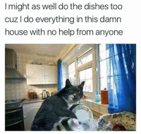 Memes, Help, and House: I might as well do the dishes too  cuz I do everything in this damn  house with no help from anyone  PabloPiqasso