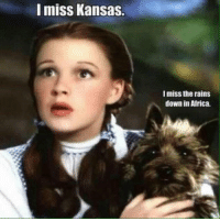Africa, Reddit, and Home: I miss Kansas.  I miss the rains  down in Africa.
