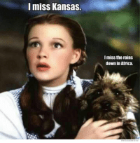 Africa, Kansas, and Down: I miss Kansas.  I miss the rains  down in Africa.  WeKnowMemes