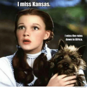 Africa, Kansas, and Down: I miss Kansas.  I miss the rains  down in Africa.