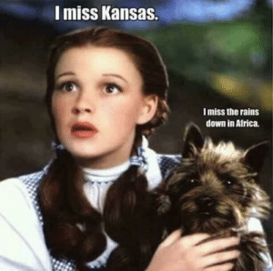 Africa, Head, and Memes: I miss Kansas.  I miss the rains  down in Africa. Song stuck in your head?? You are WELCOME!! 😁 ~Queen Shithead~