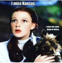 Africa, Memes, and Rain: I miss Kansas.  I miss the rains  down in Africa.