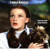 Africa, Memes, and Rain: I miss Kansas.  Imiss the rains  down in Africa.