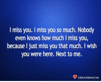 i miss you so much: I miss you. I miss you so much. Nobody  even knows how much I miss you,  because l just miss you that much. I wish  you were here. Next to me.  LikeLo  1n  LikeLoveQuotes.Com
