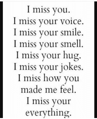 I miss you  I miss your voice.  I miss your smile  I miss your smell  I miss your hug  I miss your jokes  I miss how you  made me feel  I miss your  everything