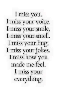 I miss you.  miss your voice.  I miss your smile.  I miss your smell.  I miss your hug.  I miss your jokes.  I miss how you  made me feel  I miss your  everything 💜