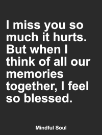 <3: I miss you so  much it hurts.  But when I  think of all our  mermories  together, I feel  so blessed  Mindful Soul <3