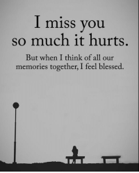 i miss you so much: I miss you  so much it hurts,  But when I think of all our  memories together, I feel blessed