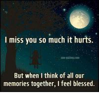 miss you: I miss you so much it hurts.  sun-gazing com  But when I think of all our  memories together, I feel blessed. miss you