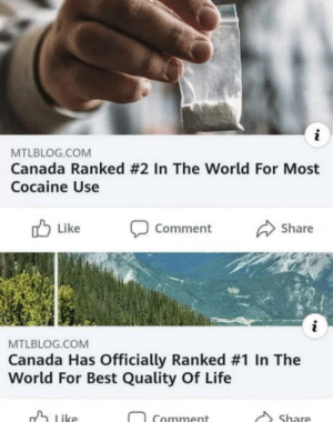 laughoutloud-club:  I always knew Canada was nothing but drug addicted bears and maple trees..: i  MTLBLOG.COM  Canada Ranked #2 In The World For Most  Cocaine Use  Like  Share  Comment  i  MTLBLOG.COM  Canada Has Officially Ranked #1 In The  World For Best Quality Of Life  Like  Share  Comment laughoutloud-club:  I always knew Canada was nothing but drug addicted bears and maple trees..