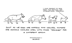 """Evolution of Canine Anxiety - Part of a comic about anxiety that Im working on for a mental health magazine.: I MUST PROTECT MY PACK  FROM THEPOSTMAN AND  INTERNATIONAL TERRORISM  OUST AS WE DOGS ARE ANXIOUS MINI WOLVES, HUMANS  ARE ANXIOUS -AI R LESS APES, WIT-MINDS """"DESIGNED"""" FOR  A DIF FERENT EPOCH.  DRAWIN G SorD OG S.co.UK Evolution of Canine Anxiety - Part of a comic about anxiety that Im working on for a mental health magazine."""