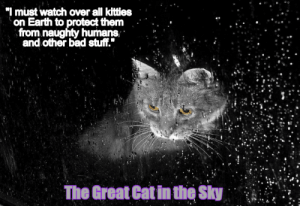 Bad, Kitties, and Earth: I must watch over all kitties  on Earth to protect them . . -  from naughty humans  and other bad stuff.  The Great Cat in the Sky