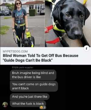 """Bruh, Dogs, and Reddit: i  MYPETSDOG.COM  Blind Woman Told To Get Off Bus Because  """"Guide Dogs Can't Be Black""""  $10/lb pork supplier  Bruh imagine being blind and  the bus driver is like  You can't come on guide dogs  aren't black  And you're just there like  What the fuck is black  2 What's a dog"""