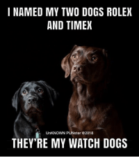Dogs, Memes, and Rolex: I NAMED MY TWO DOGS ROLEX  AND TIMEX  UnKNOWN PUNster @2018  THEY RE MY WATCH DOGS It was about time. #UnKNOWN_PUNster